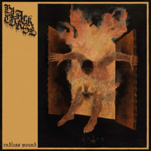 Black Curse - Endless Wound - BLEZT
